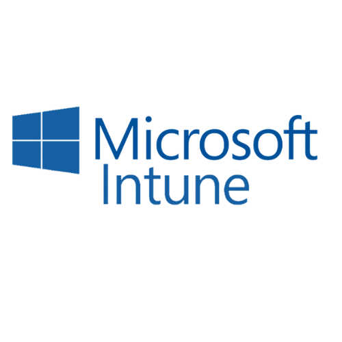 MicrosoftTeams-image (4)-4